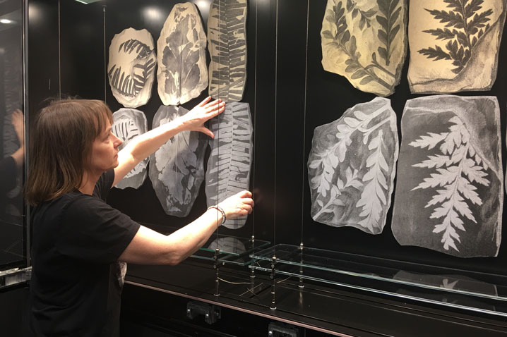 Emma is hard at work in Fisher Library bumping in her fabulous exhibition Art and Nature: Antidotes to Anxiety, as part of the Big Anxiety Festival https://www.thebiganxiety.org/events/art-nature-antidotes-anxiety/