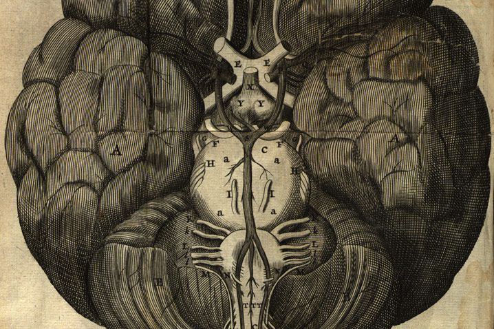"""The circle of Willis and his circle of friends"":Thomas Willis Cerebri anatome cui accessit nervorum description et usus (Amstelodami, apud Gerbrandum Schagen, 1664)"